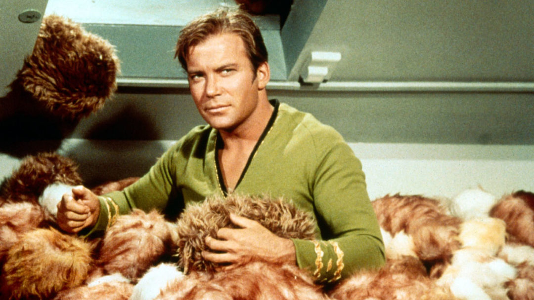 William Shatner Will Save Us All